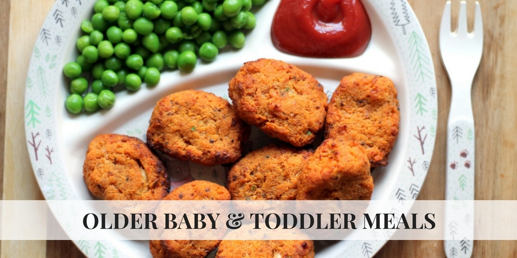 Modern vegetarian recipes for babies toddlers happy veggie tots welcome to happy veggie tots the baby and toddler recipe hub at happy veggie kitchen whether youre raising a vegetarian or vegan baby or just looking forumfinder Images